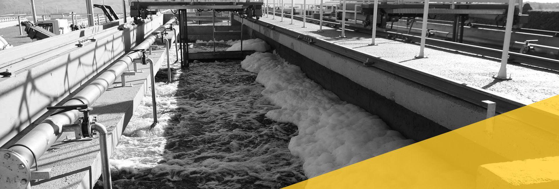 Expertise em projetos Saneamento e Recursos Hídricos - Licitações e Concessões - Public Bid   Expertise in Sanitation and Water Resources Projects   Licitações e Concessões - Public Bid